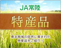 JA常陸の特産品